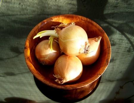 Zwiebeln in der Natur-Heilkunde